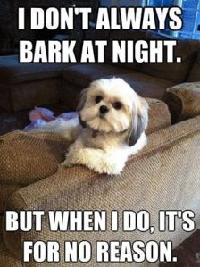 BArking puppy