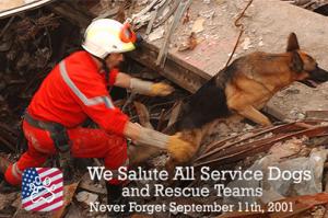 salute service dogs