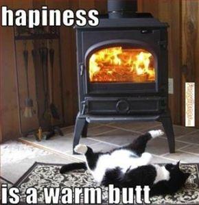 a warm butt